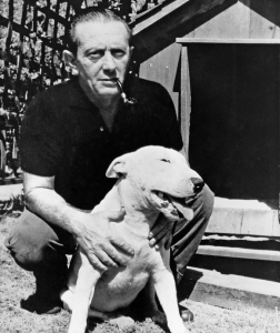 John Fante e il suo adorato bull terrier Rocco.